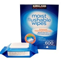 Moist Flushable Wipes Pack 600